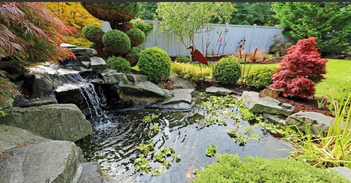 Comment bien choisir son bassin de jardin sur mesure en 2020 ?